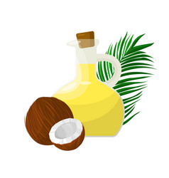Coconut oil in glass vector