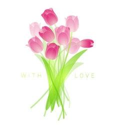 Fresh spring tulips vector