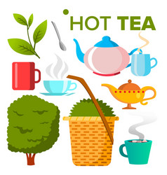 hot tea icon food drink eco natural vector image