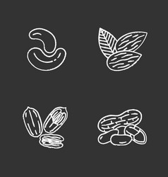 nuts chalk icons set vector image