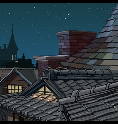 Part cartoon roofs from tile star night vector