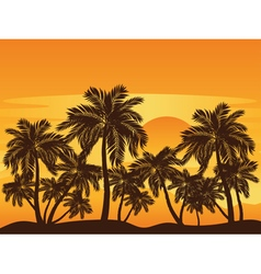 Palm Tree at Sunset3 vector image vector image
