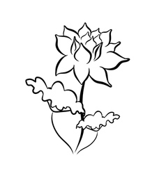 Sketch line drawing of lotus flower vector image vector image