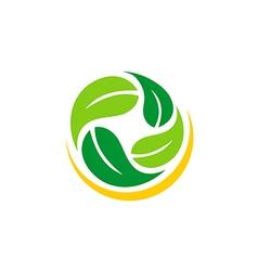 green leaf abstract vegetarian logo vector image vector image