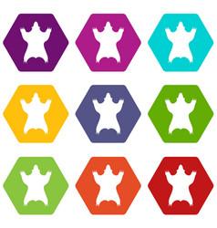 Bear skin icons set 9 vector