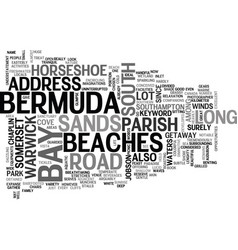 Bermuda beaches text word cloud concept vector