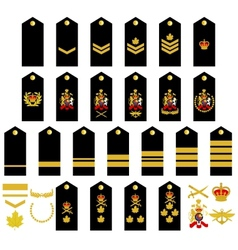 Canadian Army insignia vector