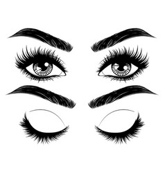 eyes with long eyelashes and brows vector image