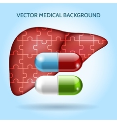 Liver puzzle and pills medical background vector image