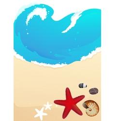 Sea beach with starfish vector image