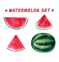Watercolor hand drawn watermelon set vector