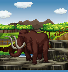 woolly mammoth at park vector image