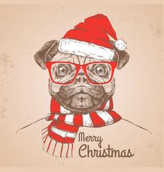 christmas hipster fashion animal pug-dog vector image