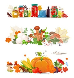 collection borders with preserve food and vector image vector image