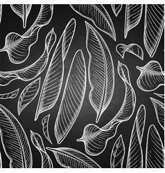 Graphic heliconia pattern vector