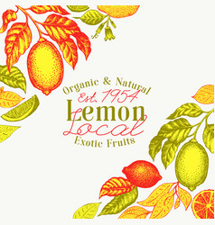 hand drawn fruit lemon fruit vector image