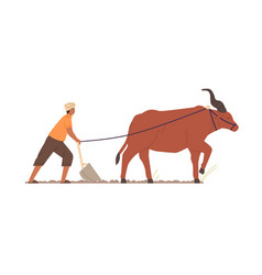 indian farmer plowing with traditional primitive vector image