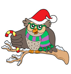 owl in christmas outfit vector image
