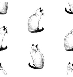 Seamless pattern sketches sitting siamese cats vector