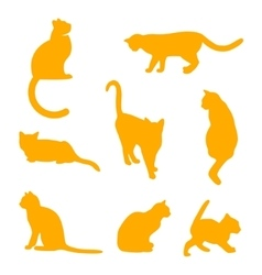 set cats silhouettes on a white background vector image