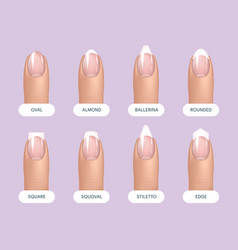 Set of simple realistic natural manicured nails vector