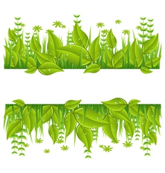 Green eco line with leafs vector image