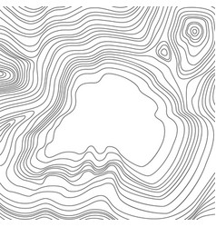 abstract map pattern with wavy lines vector image