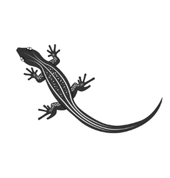 Beautiful monochrome lizard lizard silhouette vector