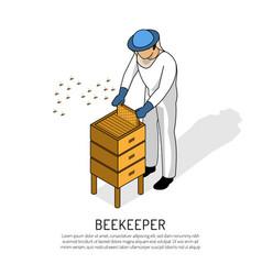 beekeeper isometric vector image