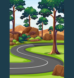 Curve road in the woods vector