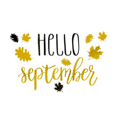 hello september lettering text with autumn leaves vector image