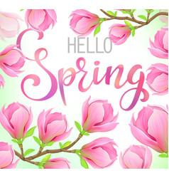 hello spring magnolia flowers vector image