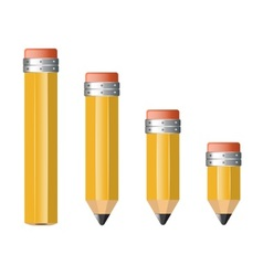 pencils of different size vector image