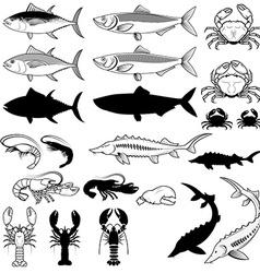 Set of the fish crabs shrimps lobsters design vector