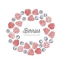 wildberries vintage frame hand drawn vector image