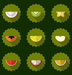 Fruit set background Include apple coconut papaja vector image vector image