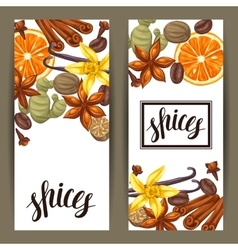 Banners design with various spices vector image