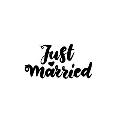 just married handwritten lettering vector image