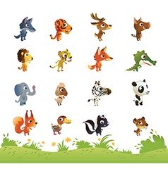 large collection cartoon animals vector image