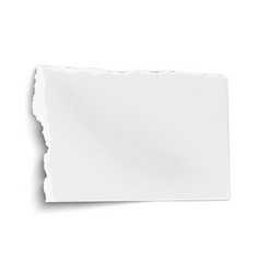 Ragged paper wisp with soft shadow isolated vector