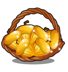 Wicker basket filled with golden nuts isolated on vector