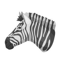 zebra icon in monochrome style isolated on white vector image vector image