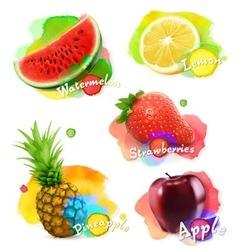 Fruit and berries watercolor set vector image vector image