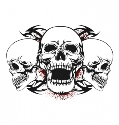 three skulls vector image vector image