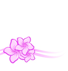 background with beautiful purple flowers vector image