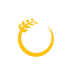 Circle wheat graphic design template vector