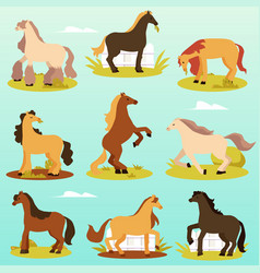Cute thoroughbred pony horses in various poses vector