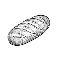 Loaf bread vector