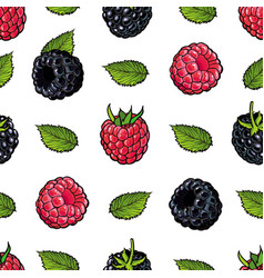 Raspberry and blackberry seamless pattern with vector
