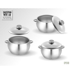set of saucepans with lid realistic 3d vector image